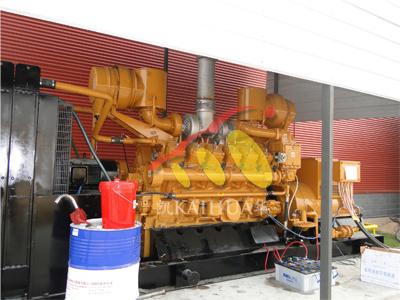 西安农场800KW燃气发电机组成功交付 国内案例 第1张