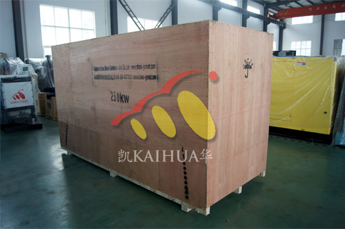 出口刚果金1台250KW康明斯发电机组今日成功出厂 发货现场 第2张