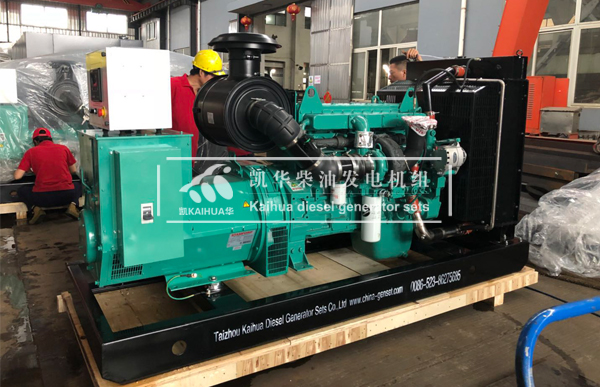 出口印尼的两台250KW康明斯发电机组成功出厂 发货现场 第1张