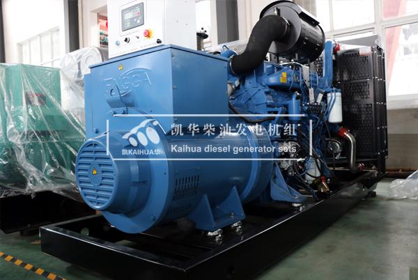 武汉食品500KW玉柴发电机组成功出厂