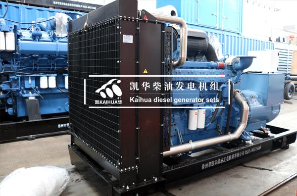 祝贺上海能源300KW玉柴发电机组成功出厂 发货现场 第2张