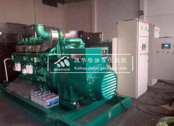 安徽农业800KW玉柴发电机组 典型案例